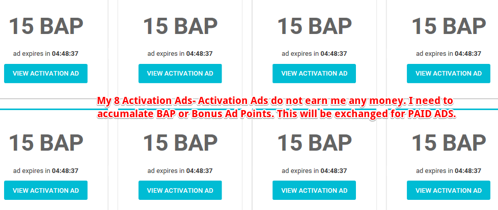 How does the Paidverts Activation Ads work?