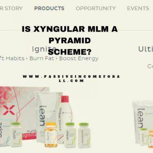 Is Xyngular a pyramid scheme