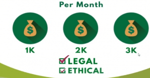 is my freelance paycheck a scam, can you earn big money with my freelance paycheck