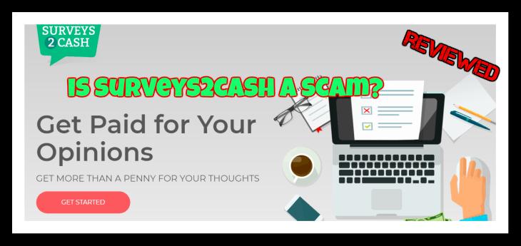 surveys2 cash review featured image