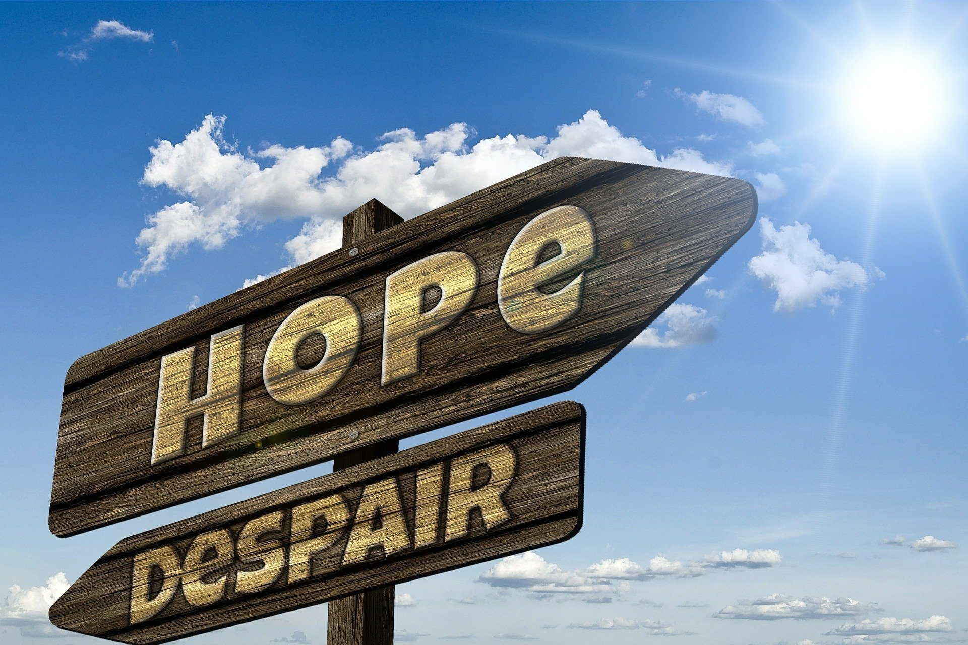 there is hope to make money online