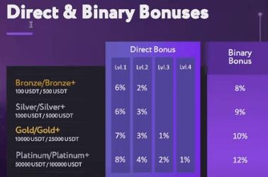 The direct and binary bonuses