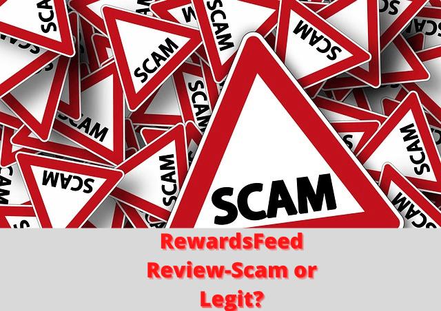 RewardsFeed picture